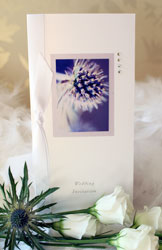Thistle Wedding Invitation